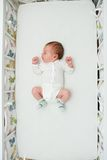 Newborn boy sleeping in big bed Stock Photos