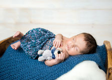 Newborn boy sleeping with toy mouse Stock Images