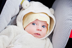 Newborn in the car seat. Newborn boy in a car seat in a funny suit royalty free stock photography