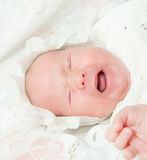 Newborn child Royalty Free Stock Images