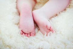 Newborn child feets Royalty Free Stock Photography