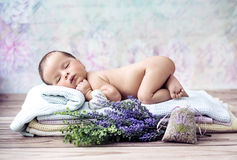 Newborn child sleeping on the blanket Royalty Free Stock Image