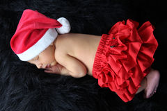 Newborn Christmas Stock Photos