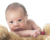 Newborn Climbing Over His Teddy Royalty Free Stock Photo