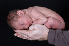 Newborn cradled in Fathers hands