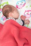 Newborn 8 days old baby sleeping in the crib Stock Image