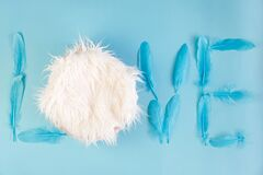 Free Newborn Digital Background With Fur And Feathers On Blue Backdrop Stock Photo - 198244680