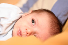Newborn dreaming Royalty Free Stock Image