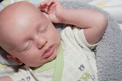 Newborn Dreaming Stock Photo