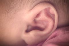 Newborn ear. Newborn little ear of little girl Royalty Free Stock Image