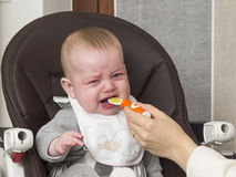 Newborn eating. Newborn testing for the first time to eat a solid food Stock Images