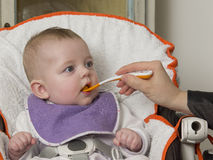 Newborn eating. Newborn testing for the first time to eat a solid food Royalty Free Stock Images