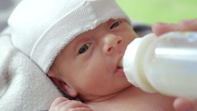 Newborn eats from a bottle. A newborn baby boy eats a nutritious mixture or milk from a bottle with a pacifier stock footage