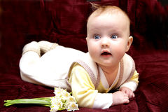 Newborn european baby girl boy with lily of walley 3 months old Royalty Free Stock Image