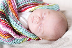 Newborn fast asleep Royalty Free Stock Photos