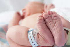 Newborn Feet Stock Images