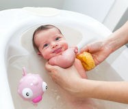 Newborn first bath Royalty Free Stock Photography