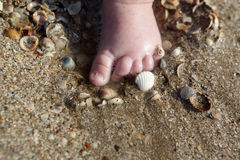 Newborn foot in the sand Royalty Free Stock Image