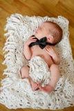 Newborn gentleman Royalty Free Stock Image