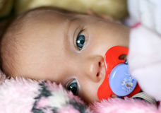 Newborn girl Royalty Free Stock Photography