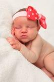 Newborn girl royalty free stock photo