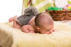Newborn girl in bunny costume Royalty Free Stock Images