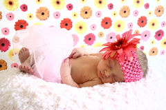 Newborn girl sleeping. Newborn baby girl sleeping with pink and yellow flower background wearing tutu and giant flower headband Royalty Free Stock Photography