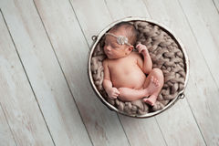Newborn Girl Sleeping in Wooden Bowl Royalty Free Stock Photos