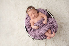Newborn Girl Sleeping in Wooden Bucket. A nine day old newborn baby girl sleeping in a little, wooden bucket. She is covered with a lavender colored, chunky Royalty Free Stock Image
