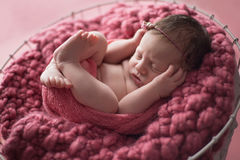 Newborn Girl Sleeping in Wooden Bucket. Nine day old newborn baby girl swaddled and sleeping in a wire basket lined with a dusty pink knit blanket Stock Photography