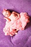 Newborn girl in tutu royalty free stock image