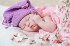 Newborn girl in a violet hat Stock Photos