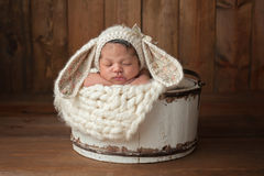 Newborn Girl Wearing a Bunny Bonnet. A three week old newborn baby girl sleeping in a little, white wooden bucket. She is wearing a cream colored bunny rabbit Stock Image