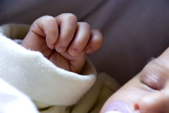 Newborn hand Royalty Free Stock Photos