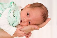 Newborn on his hand Royalty Free Stock Photo
