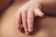 Free Newborn Infant Baby Boy`s Hand Close Up Stock Photos - 89335103