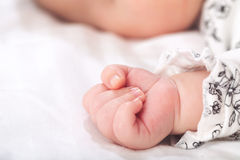 Newborn infant baby's hand Stock Image