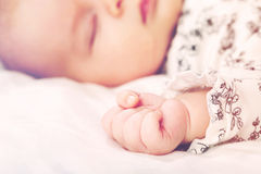 Newborn infant baby's hand Royalty Free Stock Photo