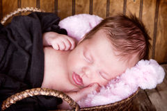 Newborn infant baby sleeping Royalty Free Stock Image