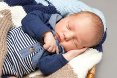 Newborn infant baby sleeping in a basket Royalty Free Stock Images