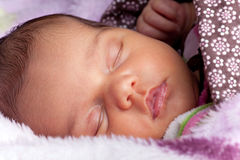Newborn Infant Fast Asleep Royalty Free Stock Photos
