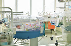 Newborn innocent baby sleeping in an incubator Stock Images