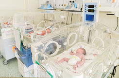 Newborn innocent babys sleeping in incubators Stock Image