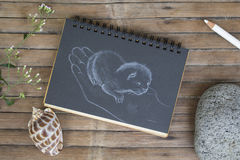 Newborn kitty in hand hand-drawn illustration. Cat by white chalk on black paper. Black paper notepad on wooden background. Vintage wooden table with artwork Royalty Free Stock Photography