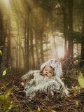 Newborn laying Stock Image