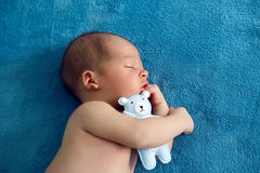 Newborn lies with the blue soft toy bear on the bed Royalty Free Stock Image