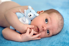 Newborn lies with the blue soft toy bear on the bed. On her back royalty free stock image