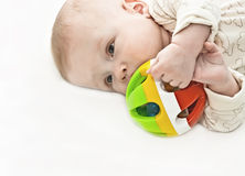 The newborn Stock Photography