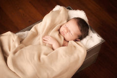 Newborn. Little newborn baby in a metal box Royalty Free Stock Images