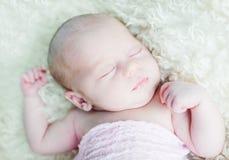 Newborn Royalty Free Stock Photo